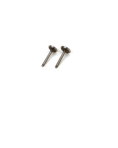 1 Pair Valve (in & out) SAI3646